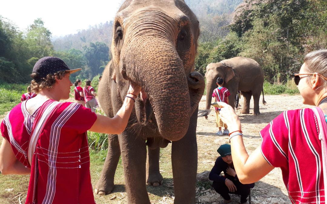 Lust auf Thailand: Mit 2 Kids durch die Welt – Teil 5 (Chiang Mai)